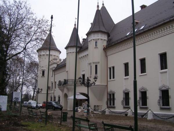 """Vezi programul evenimentelor dedicate """"Zilei Culturii Maghiare"""" de la Carei"""