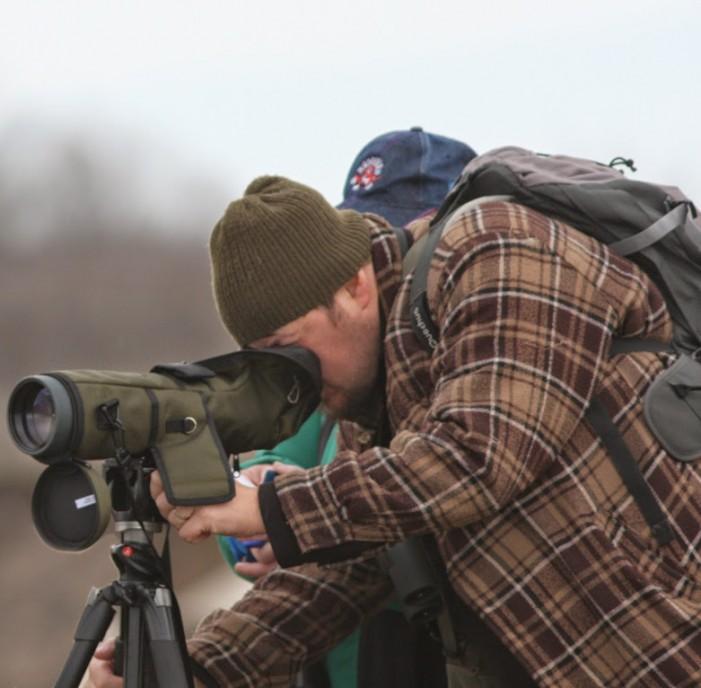 Inventarierea de iarnă a păsărilor de apă