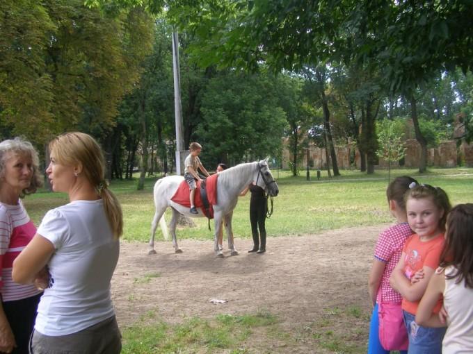 """Asociația de Echitație """"EQUUS"""" din Carei, a câștigat o finanțare din partea MOL România"""