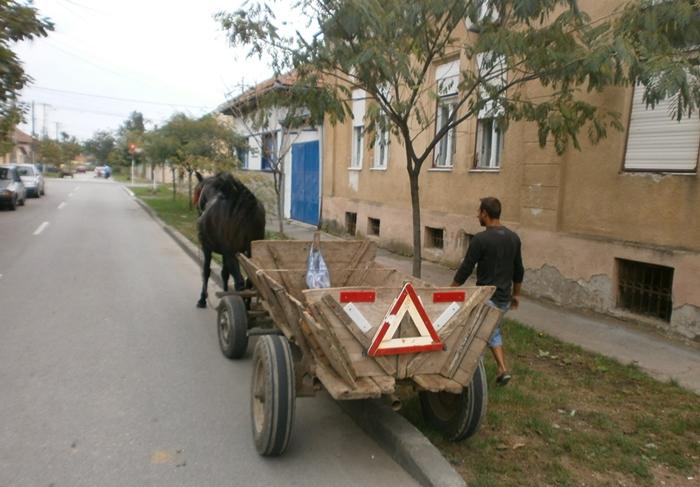 """Dorel Coica: """"Sunteți de acord cu reintroducerea circulației căruțelor în Satu Mare?"""""""
