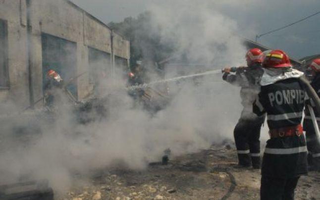 Incendiu la o fermă de porci din Livada