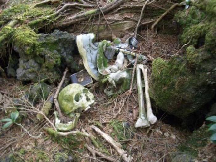 Scheletul unui bărbat, descoperit pe un câmp din Satu Mare