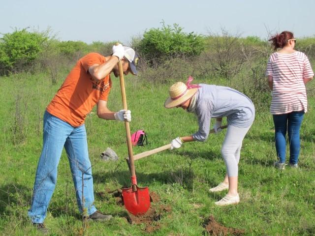 """Plantare de primăvară în Ariile Protejate """"Râul Tur"""""""