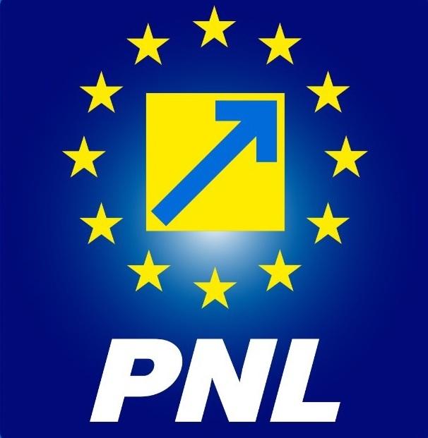 S-a decis conducerea Organizației Municipale a PNL Satu Mare