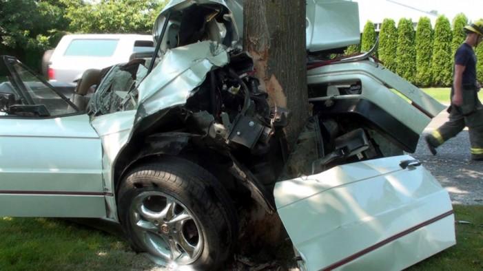 """Și-a """"parcat"""" mașina într-un copac"""