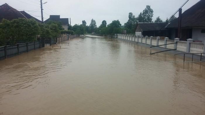 Inundaţiile de la Bârsău în imagini