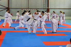 Pregătiri intense pentru Campionatul European de karate
