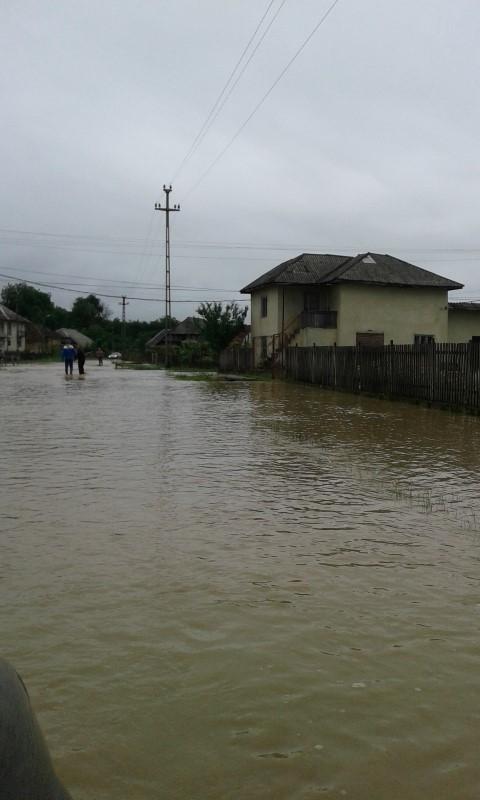 Locuințe inundate, persoane evacuate și terenuri sub ape, în urma ploilor din ultimele zile