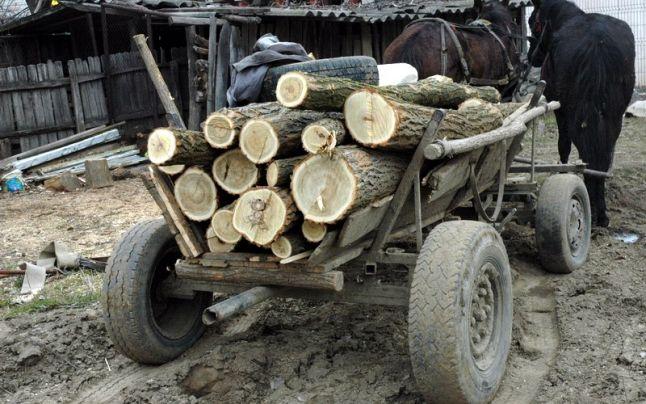 Bărbat strivit de căruța cu lemne