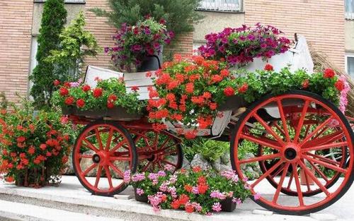 """""""Parada Florilor"""", la a VII-a ediție"""