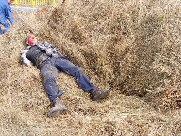 Bărbat în stare gravă după ce a căzut dintr-o căruță încărcată cu fân