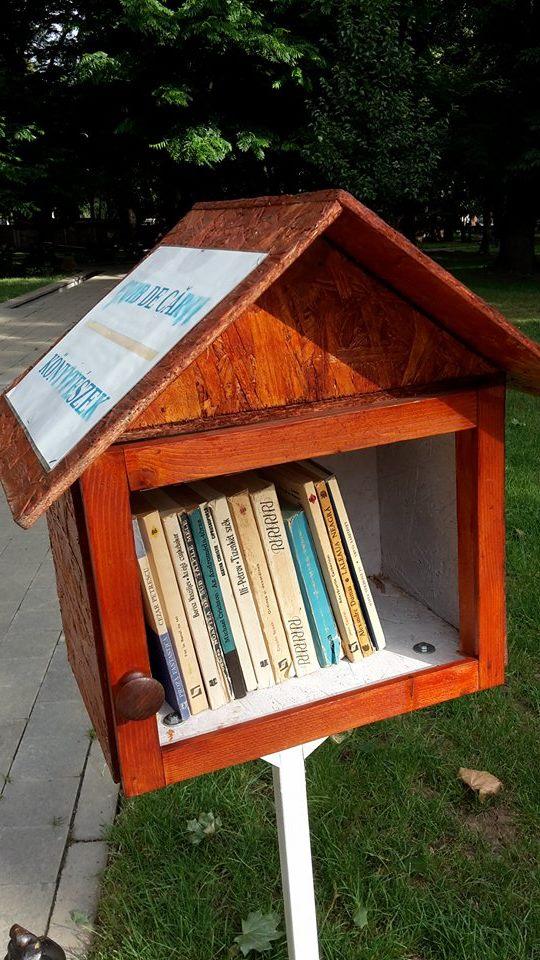 """Carei: Au fost schimbate cărțile în campania """"Cuibul de cărți"""""""