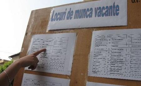 Satu Mare în TOP 10 al județelor cu cele mai multe locuri de muncă vacante