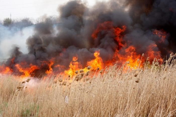 Incendiu de vegetație uscată în apropierea Aeroportului Satu Mare