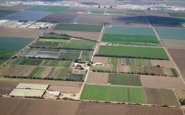 APIA face controale in teren. Zeci de mii de hectare, vizate in judet