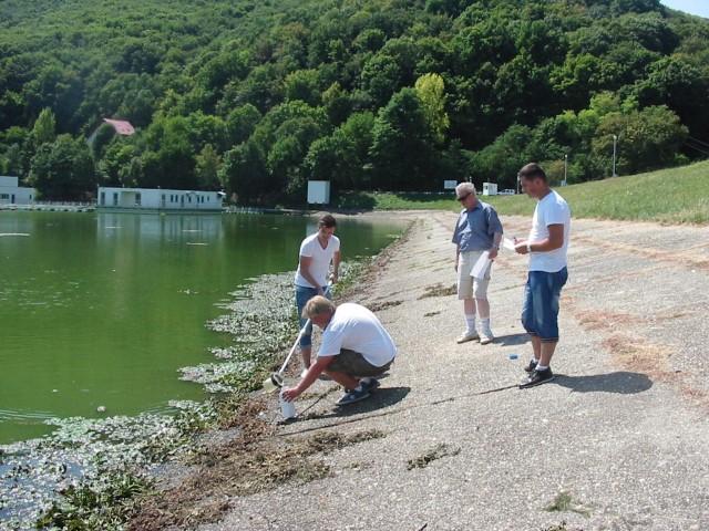 Apele din zonele umede din județul Satu Mare, evaluate de specialiști (Foto)