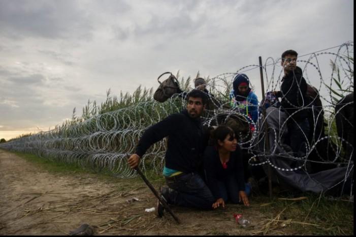 Situație explozivă la granița dintre Ungaria și Serbia