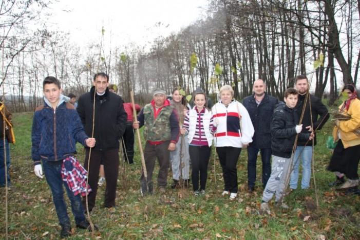 Acțiune de ecologizare organizată de APM Satu Mare