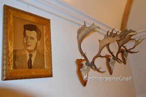 Trofee de vânătoare din colecția Nicolae Ceaușescu, în expoziție la Satu Mare (Galerie foto&Video)