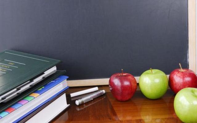 Guvernul continuă finanțarea consumului de fructe în școli