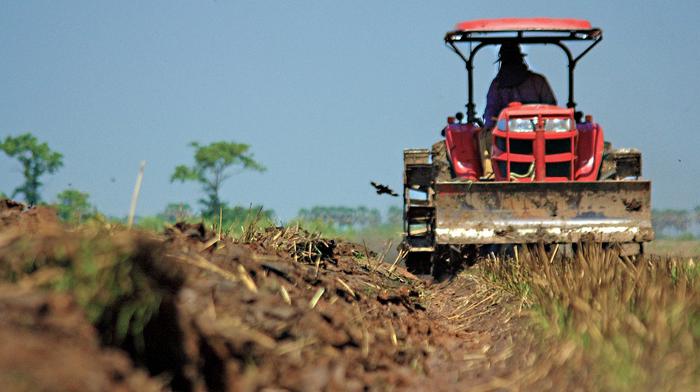 APIA incepe platile catre fermieri. De cand