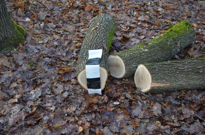 A vândut lemnele furate