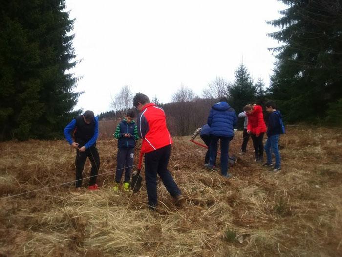 Elevii din Negrești-Oaș au plantat copaci la Luna Șes