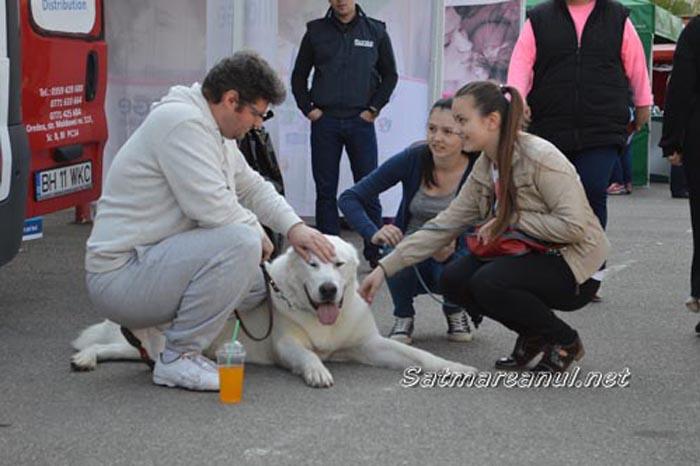 """""""International Dog Show"""", la o nouă ediție"""