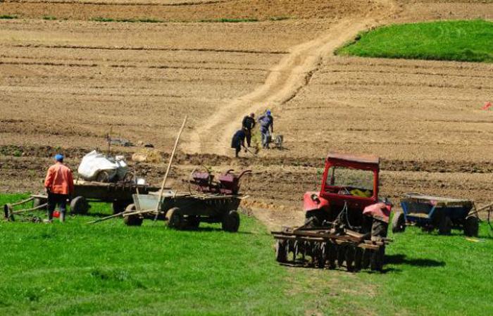 Fondurile pentru infrastructura de acces agricolă s-au epuizat în 6 minute