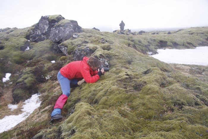 """Valorile Ariilor Protejate """"Râul Tur"""" promovate în Islanda (Galerie foto)"""