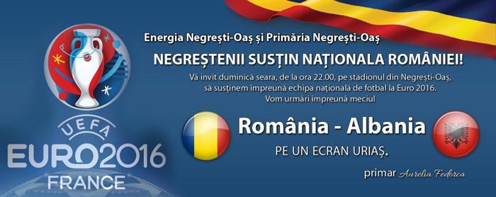 Ecran gigant pentru meciul România – Albania pe stadionul din Negrești-Oaș