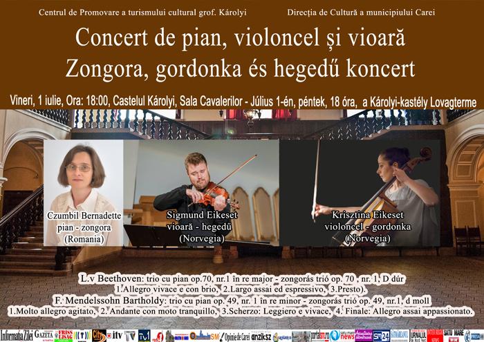 Concert de pian, violoncel și vioară la Castelul din Carei