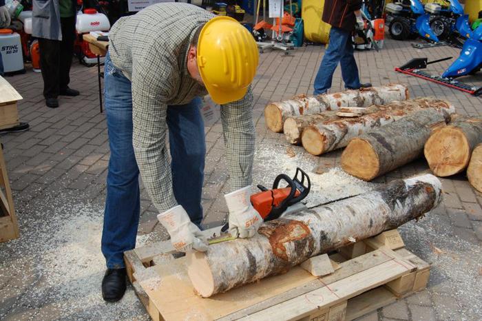 Concurs de tăiat lemne la Satu Mare