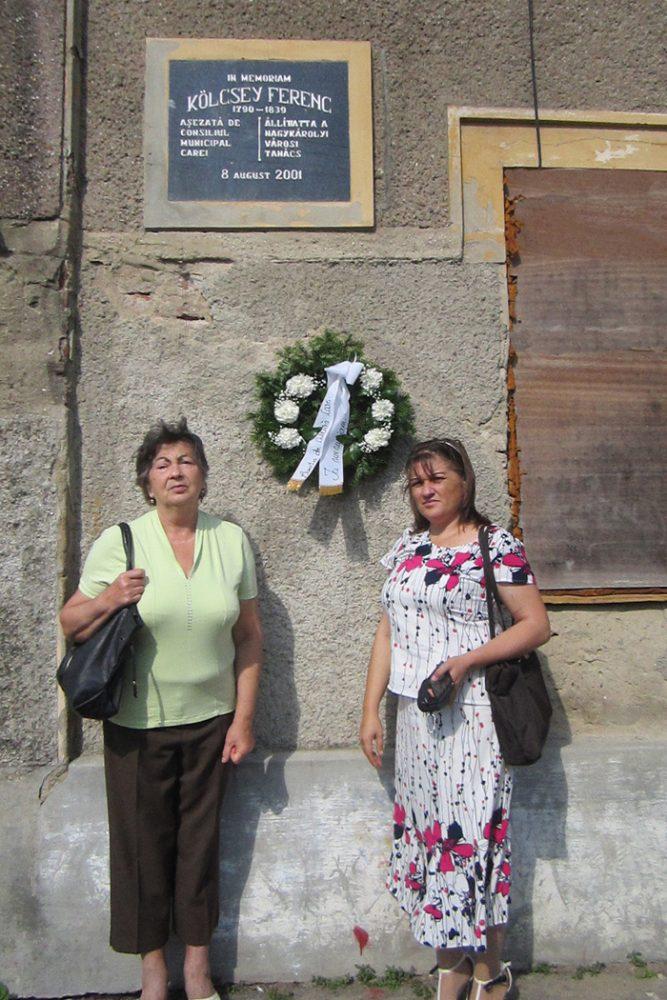 Kölcsey Ferenc comemorat la Carei