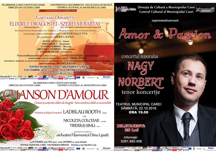 Bilete pentru concertele din Carei