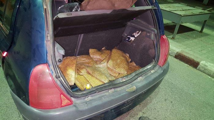 30 de kg de tutun ascunse într-o mașină, depistate la Petea