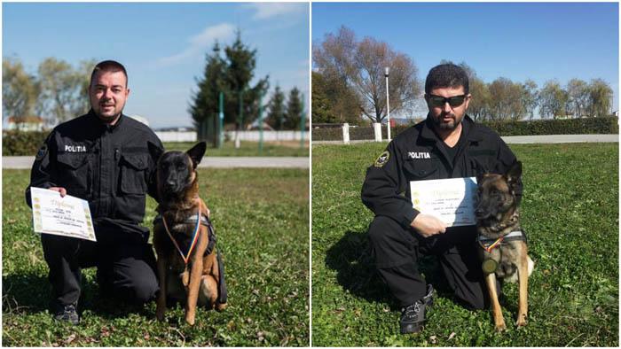"""Ares și Roca, cei mai isteți """"câini-detectivi"""" din România (Foto)"""