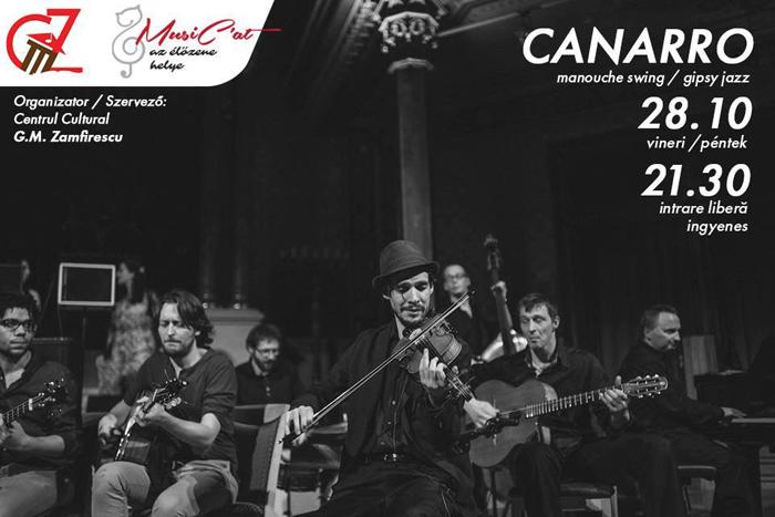 Ce concerte vor avea loc în week-end la Satu Mare