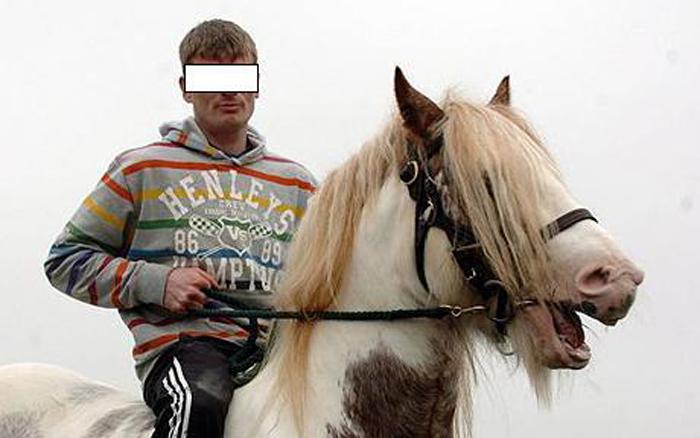 A furat un cal din grajdul unui sătmărean