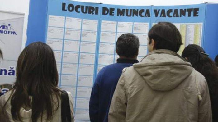 Peste 6000 de șomeri, înregistrați la AJOFM Satu Mare