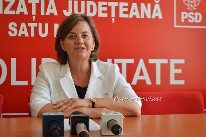 Susținere pentru Liviu Dragnea și Guvernul Grindeanu din partea PSD Satu Mare
