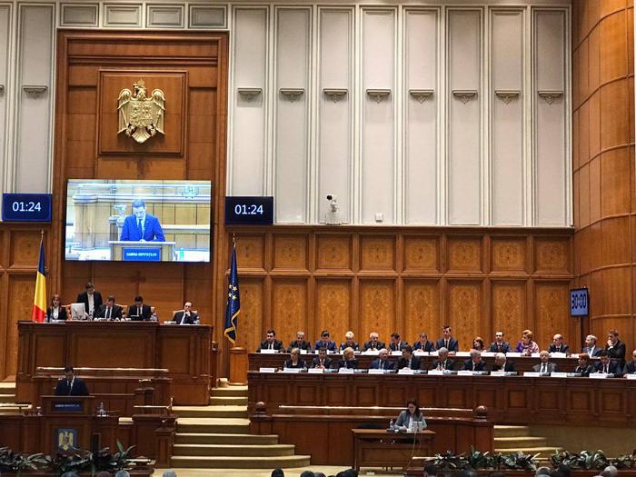"""Ioana Bran despre bugetul pe 2017: """"Am votat cu gândul la Satu Mare"""""""