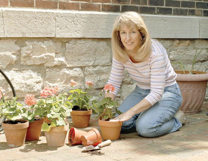 Câteva sfaturi pentru îngrijirea florilor