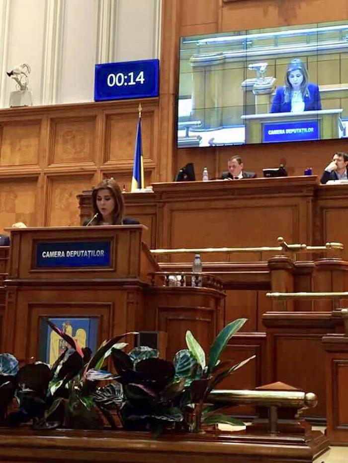Ioana Bran: Moțiunea simplă pe sănătate, dezbătută marțea viitoare de plenul Camerei Deputaților