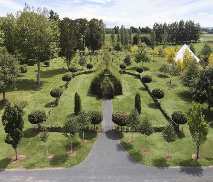 Cum arată biserica construită din arbori ? Unde poate fi văzută (Foto&video)