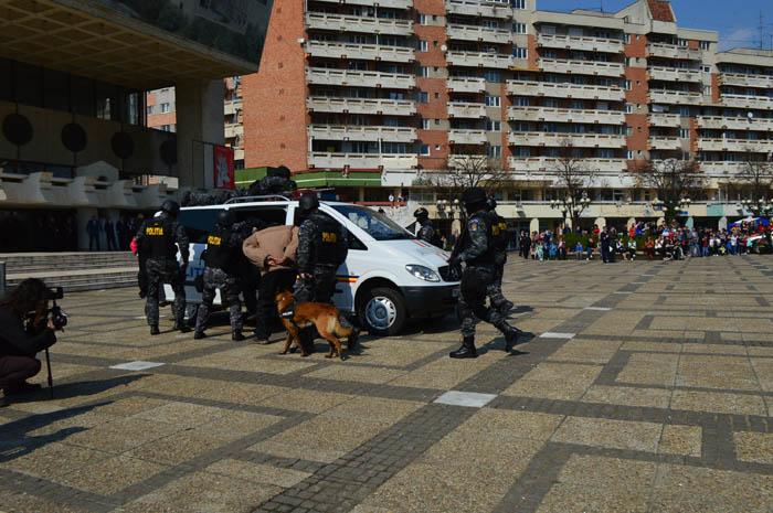 Jaf la o bancă din Satu Mare – Exercițiu organizat de Poliție (Galerie foto&video)
