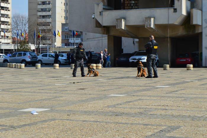 """Demonstrații cu câini și expoziție în Centrul Nou de """"Ziua Poliției Române"""" (Foto&video)"""
