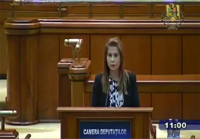 Deputatul Ioana Bran susține majorarea indemnizațiilor pentru veteranii de război (Video)