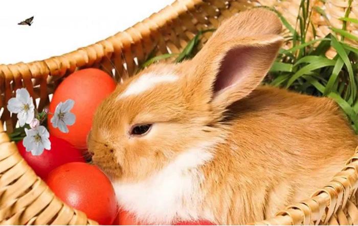 Cele mai frumoase mesaje şi urări de Paște