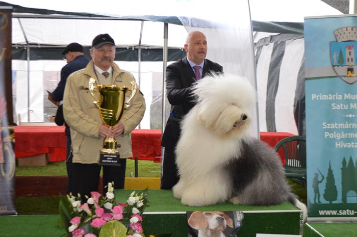 Jagger, câștigătorul suprem al Dog Show-ului de la Satu Mare (Foto)